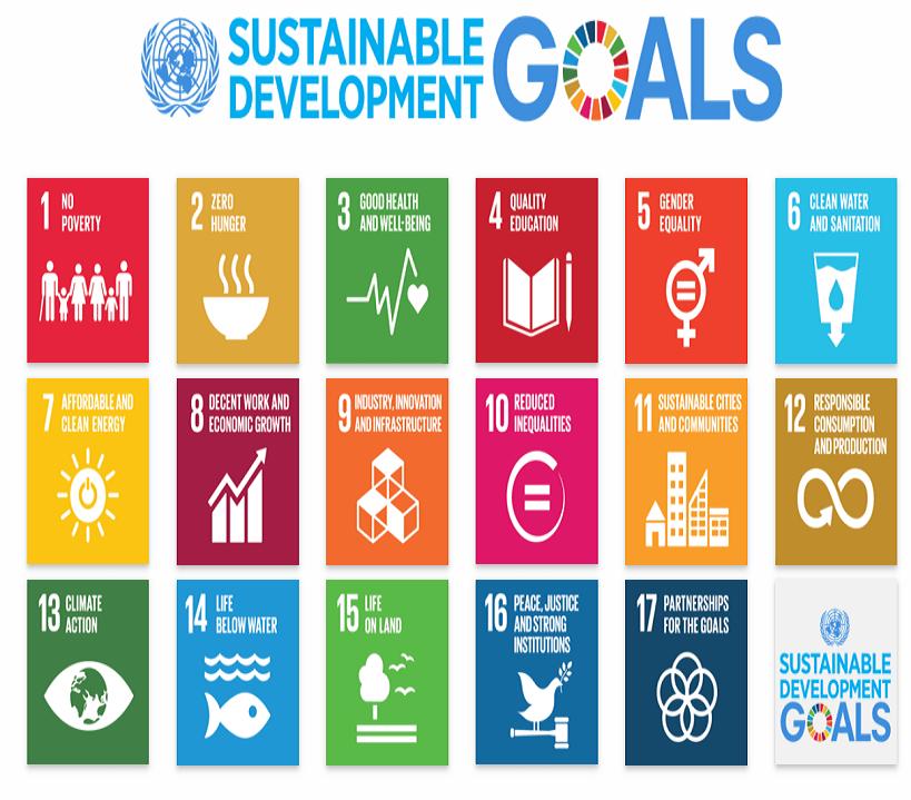 SDG-Copy.png
